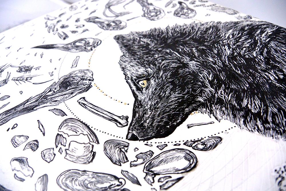 arctic fox d1.jpg
