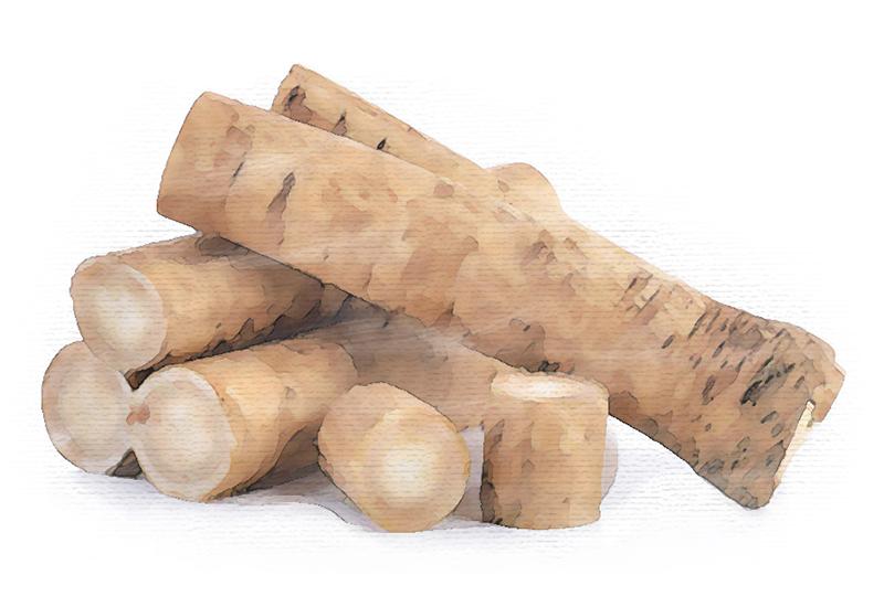 Burdock Root.jpg