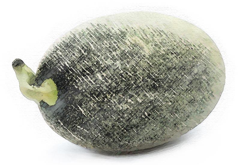 Hami Melon.jpg