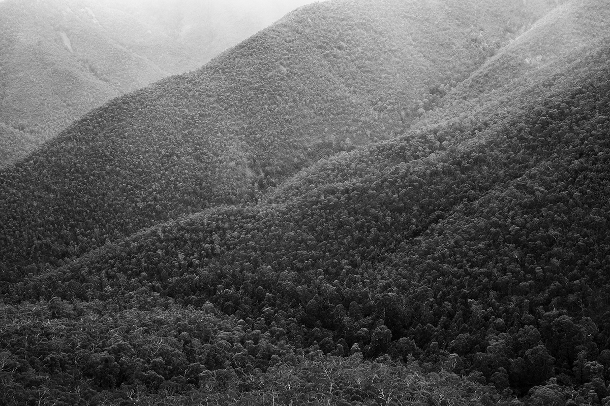 western foothills of Tidbinbilla Peak, Namadgi NP, February 2017-1.jpg