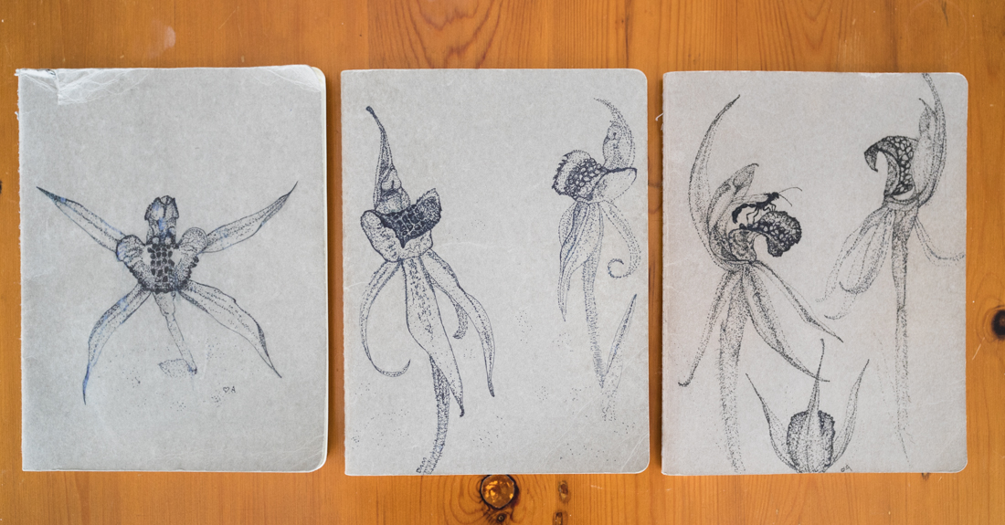 The 'Honours' notebooks - they each lasted about three months before I ran out of space and needed to 'commission' a new one. They each picture the Canberra Spider Orchid - the focal species of my Honours study.