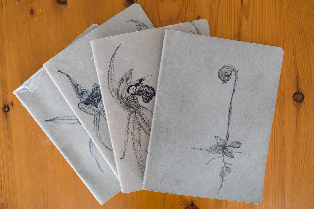 The series of orchid notebooks so far - the top one is a nodding greenhood, and will be the start of many more greenhood notebooks throughout my PhD (thanks Ali!)