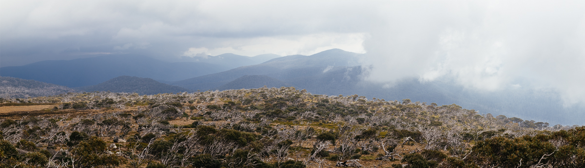 The view from Mt Bimberi.