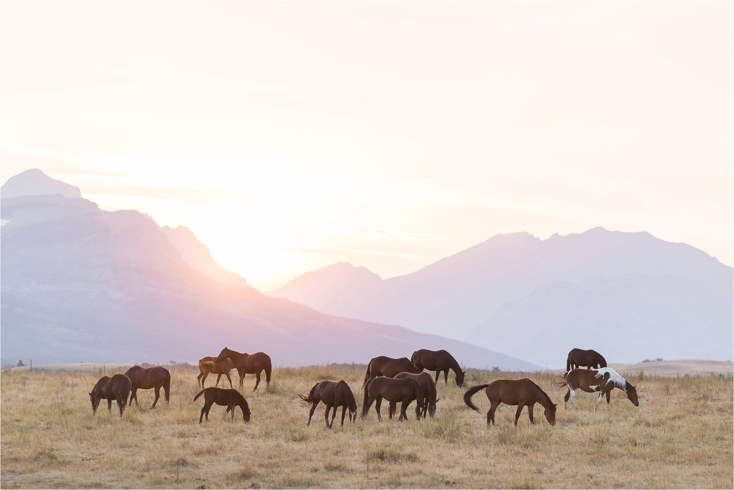 Montana Travel_0008.jpg
