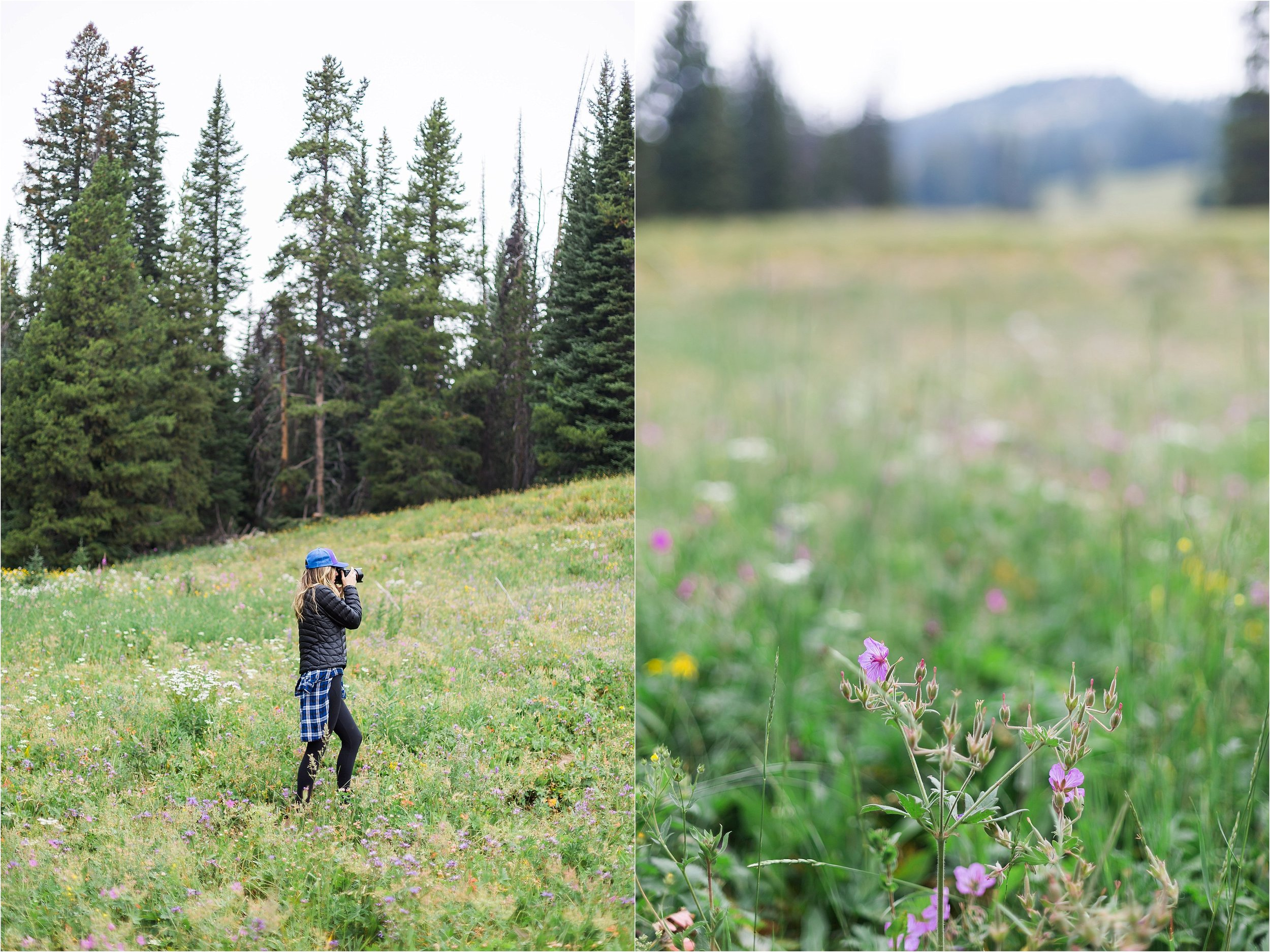 Montana Travel_0038.jpg