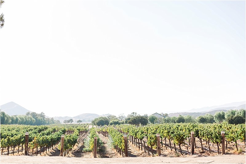 Agua Dulce Winery - Engagement Photos - Tiffany J Photography_0009.jpg