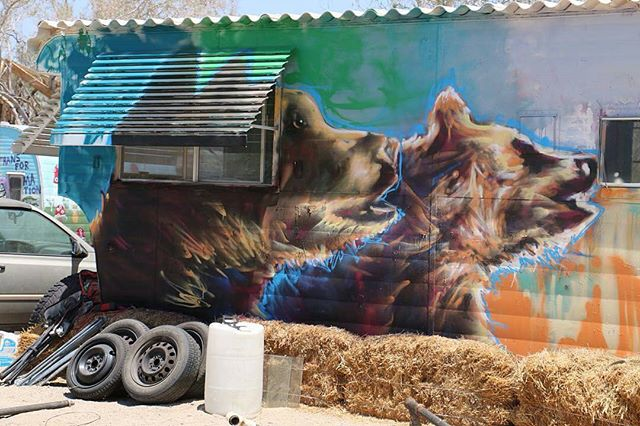Reposted from @nvralone2 -  Love running into friends out in the middle of nowhere!!! #shadowmonsterbear #mural #murals #muralsandgirls #bears #cubs #bearcubs #niland #slabcity #eastjesus #art #artist #streetart #streetartist #graffiti #graffitiart #graffitiartist #paint #spraypaint #Regrann