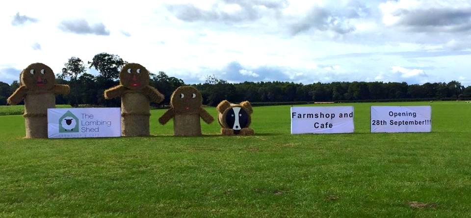 GREAT hay work outside!