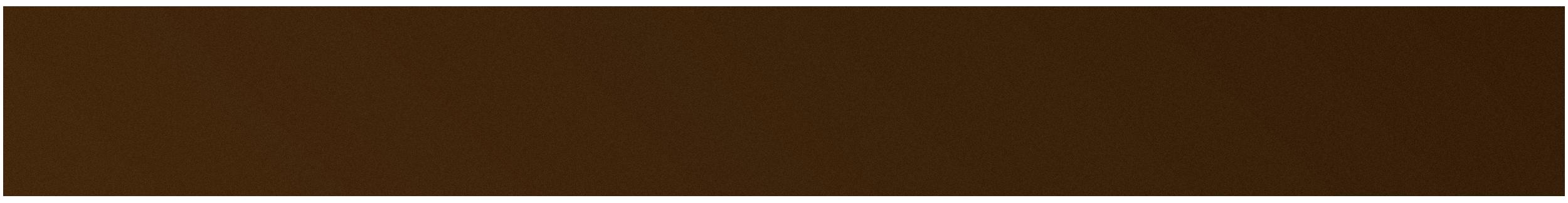 shit-shoes-logo.png