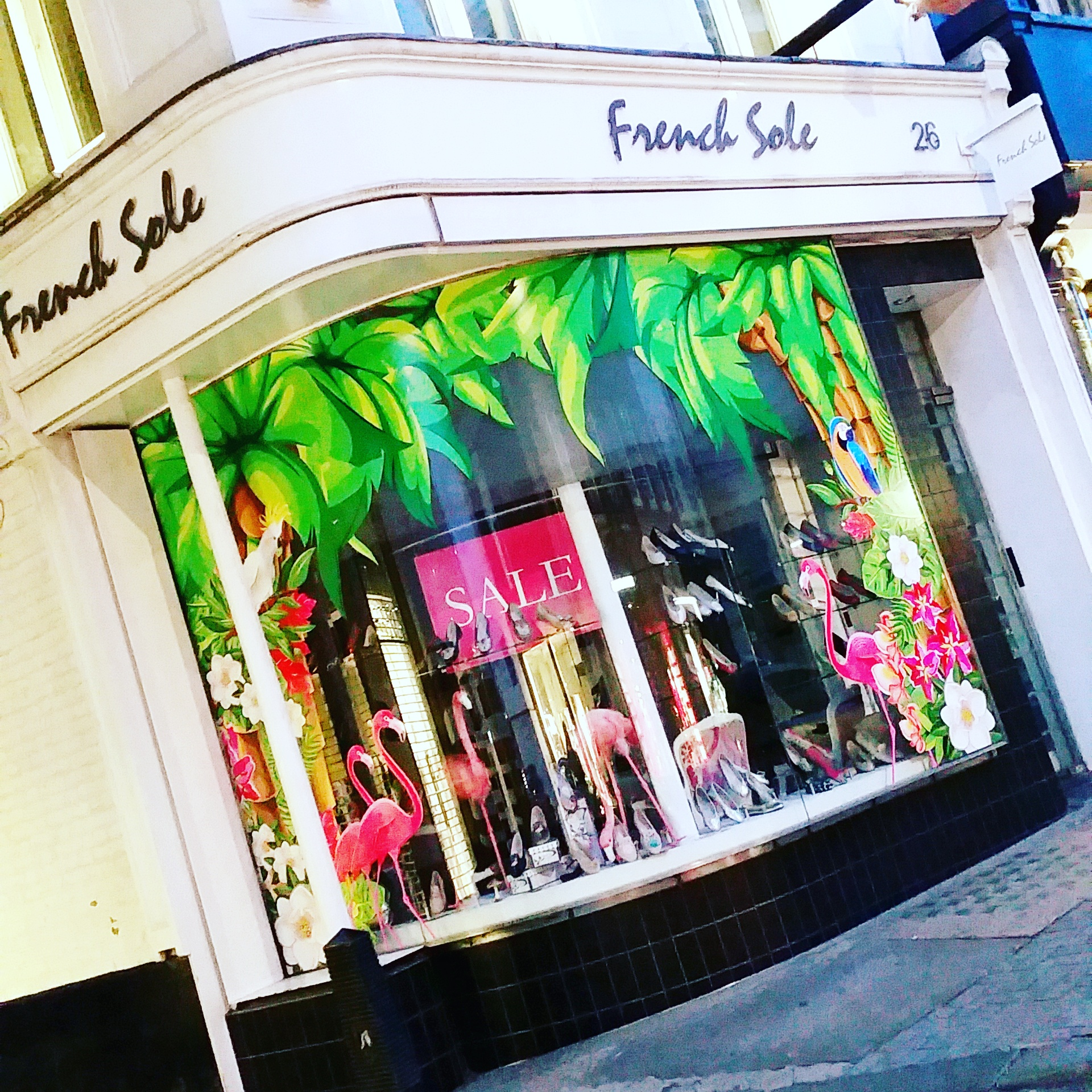 French Sole - Promotional Window Display for the Chelsea Flower Show