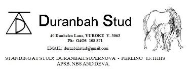 Duranbah Stud.JPG