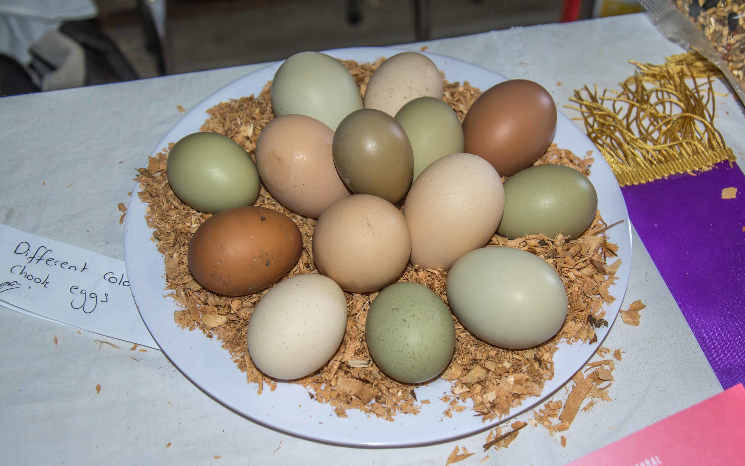 Many different coloured eggs on display