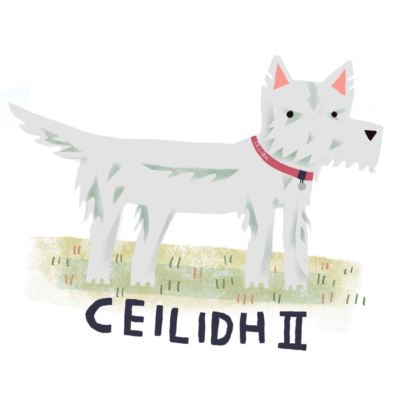 Ceilidh2.jpg