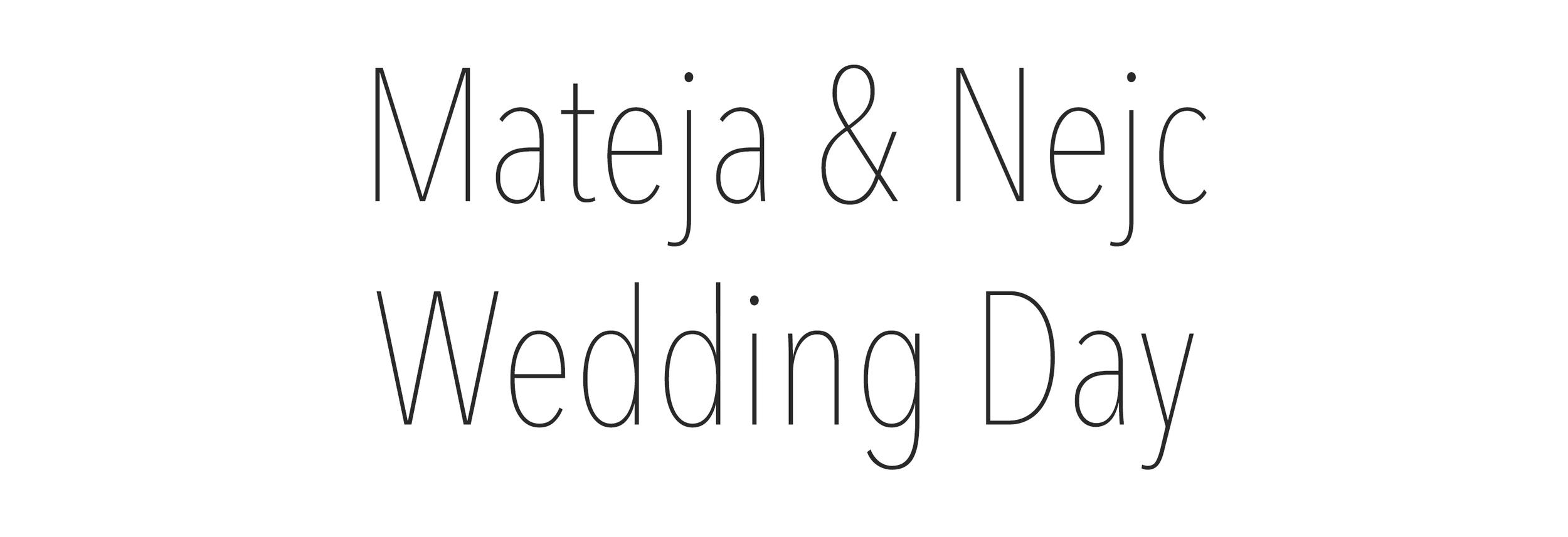 Mateja&Nejc_Wedding_Day.jpg