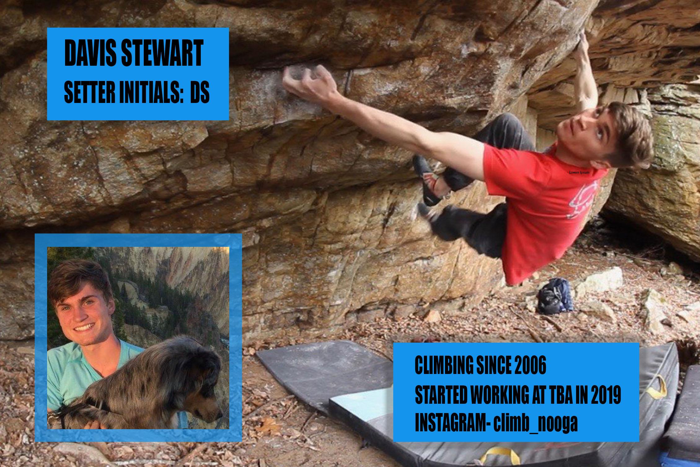 Davis Stewart Setter Card JPEG.jpg