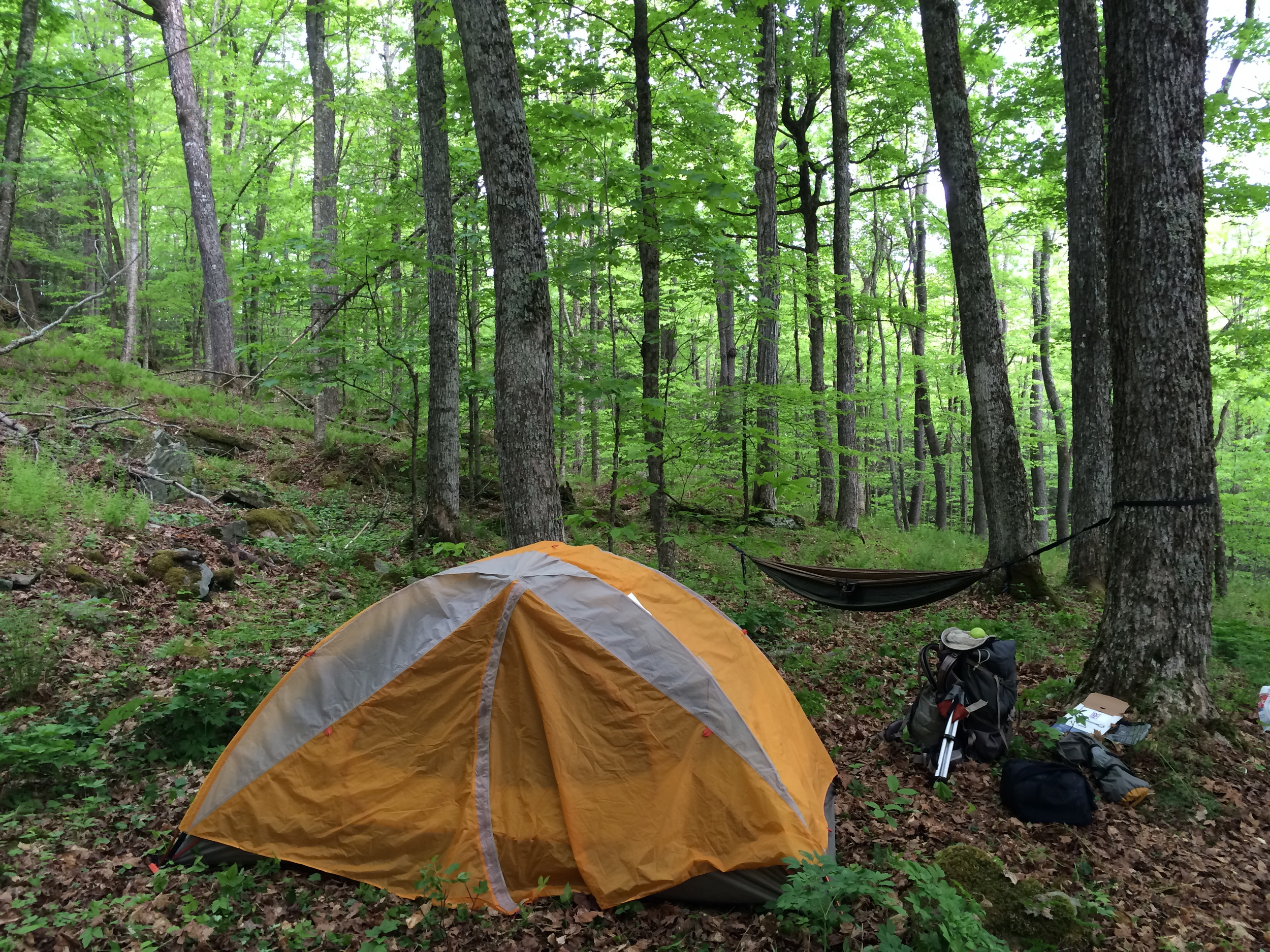 Camping in Catskill Mountains-NY