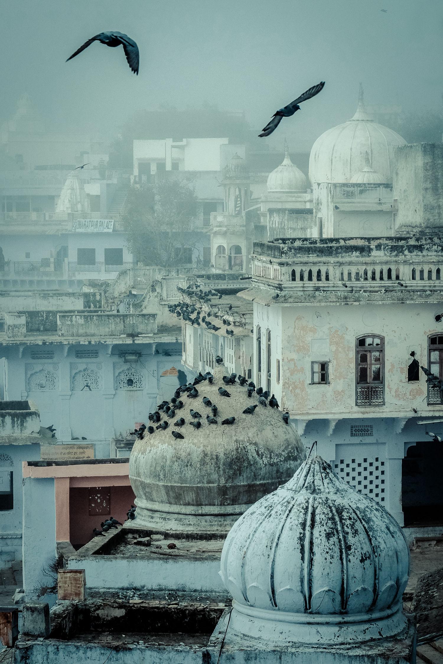 Pushkar skyline