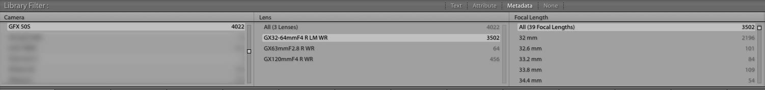 The Filter Bar in Lightroom: a great source for information. It's no surprise that I used the 32-64 the most. I cannot wait for the 23 mm that is announced for later this year!