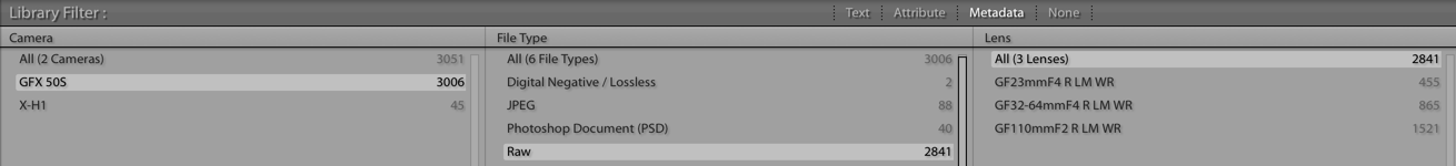 Ik ben normaal een breedhoekfan, maar zoals deze Lightroom-statistiek heeft de GF110 lens de kaarten flink door elkaar geschud! Zowat de helft van mijn foto's zijn met deze lens gemaakt!