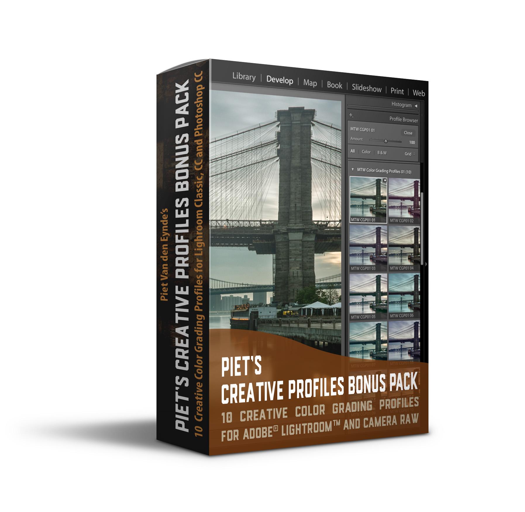 Extra bonus, GRATIS indien je de cursus aanschaft voor 28 februari - ✔︎ een set van 10 Creative Color Grading Profiles voor Lightroom Classic✔︎ honderden mogelijkheden dank zij Lightroom's Hoeveelheid schuifregelaar