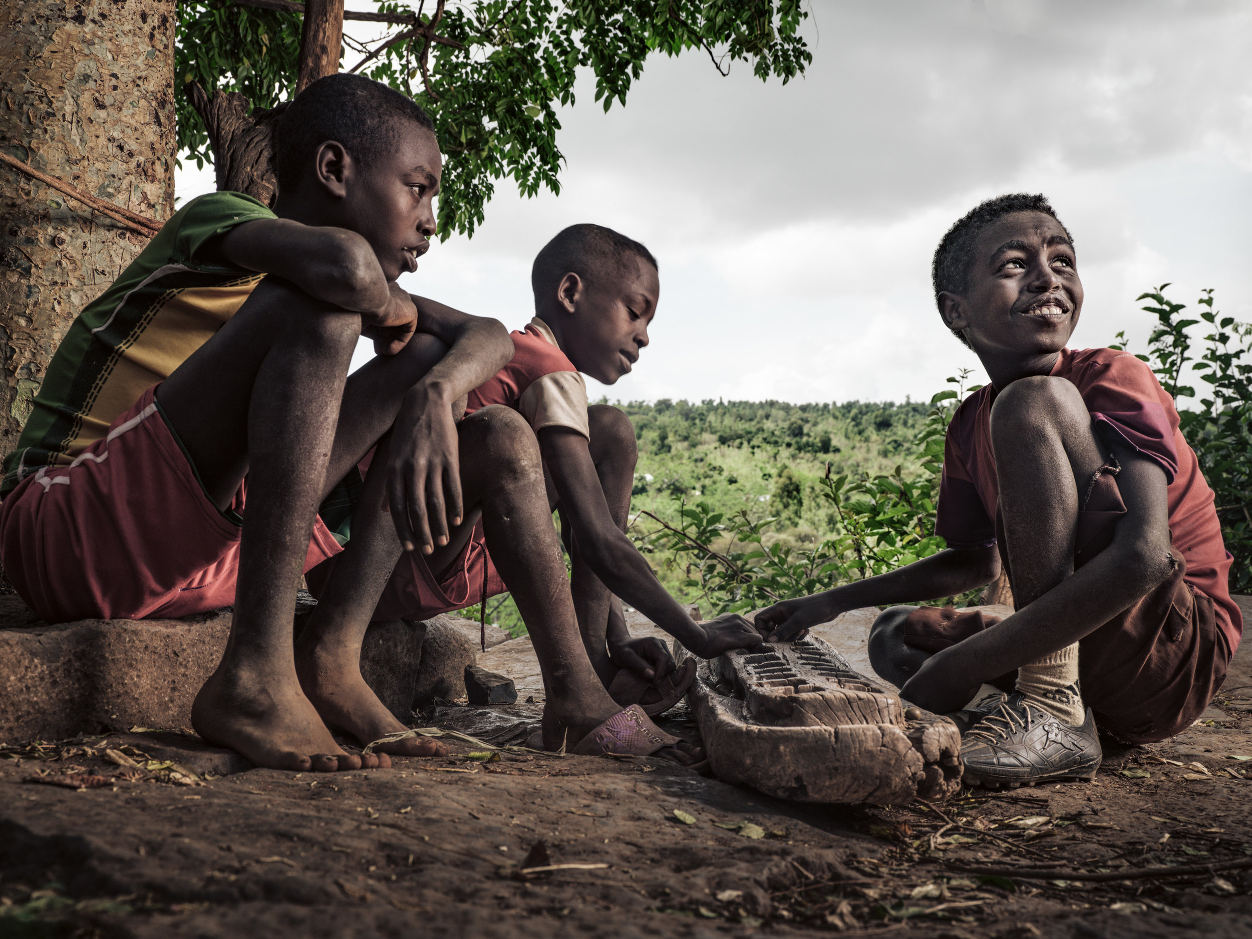 Ethiopia-Starling-PietVandenEynde_005.jpg