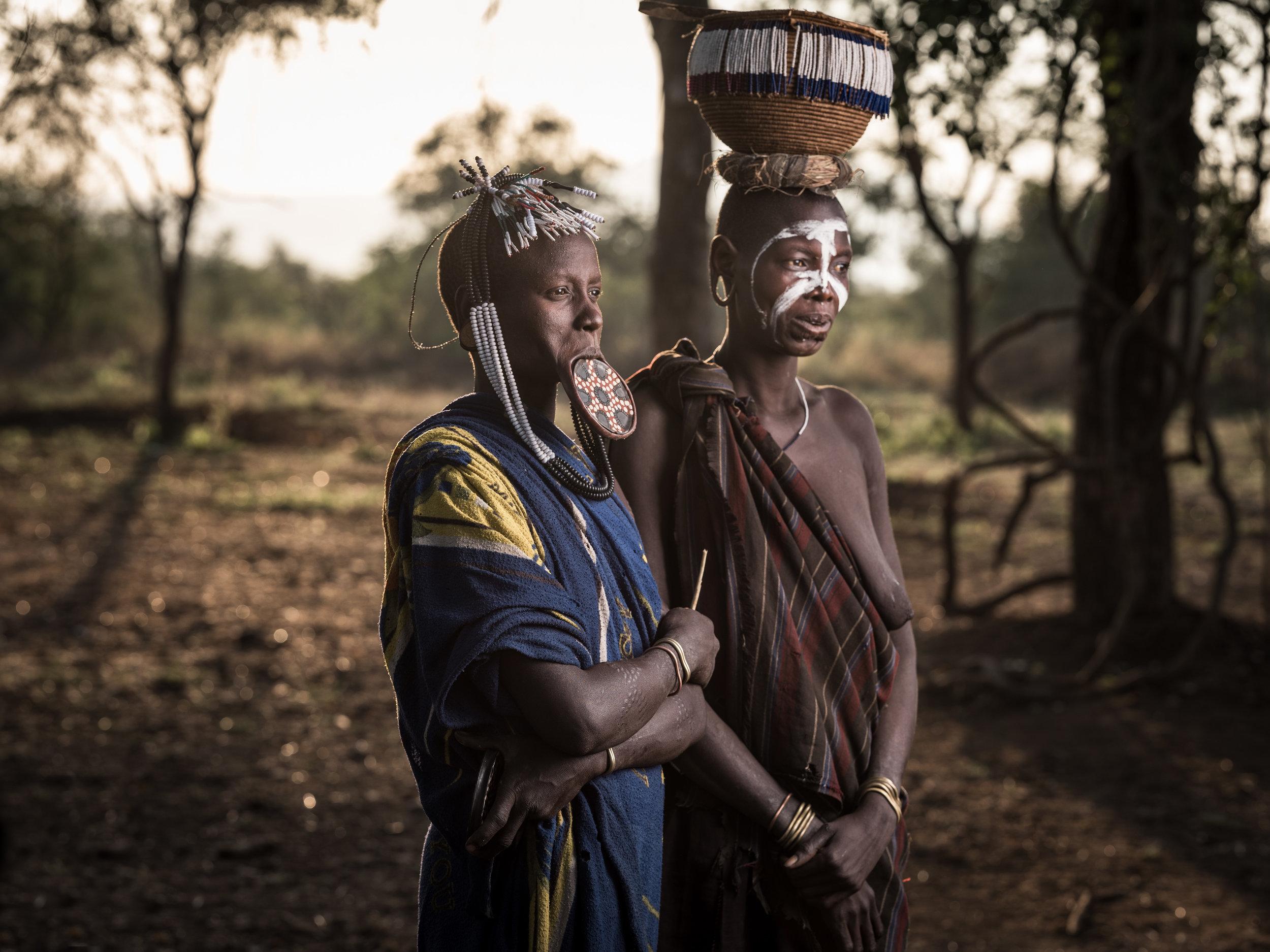 Ethiopia-Starling-PietVandenEynde_020.jpg