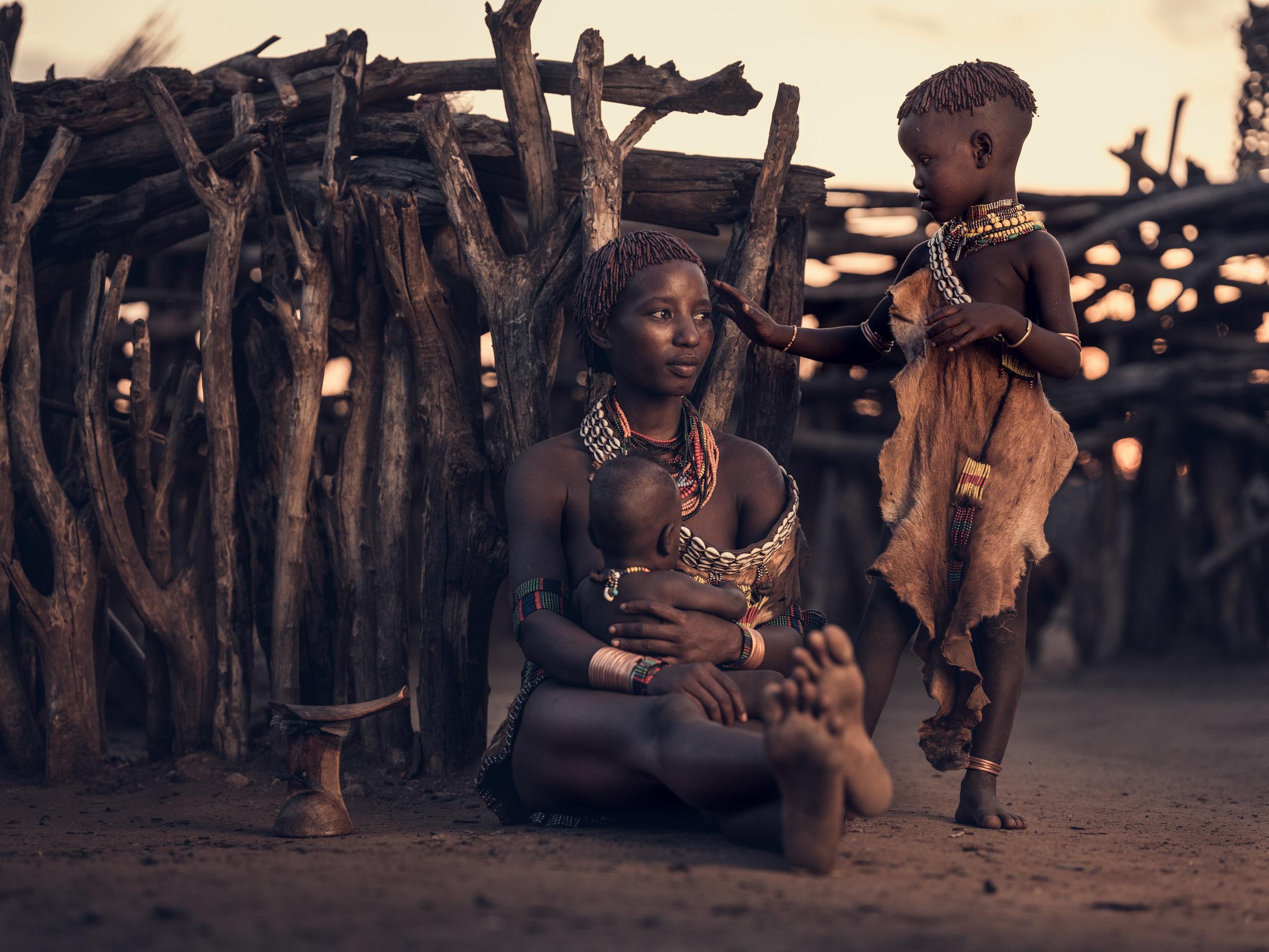 Ethiopia-Starling-PietVandenEynde_060.jpg