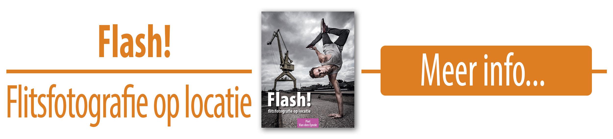 FlashBanner.jpg