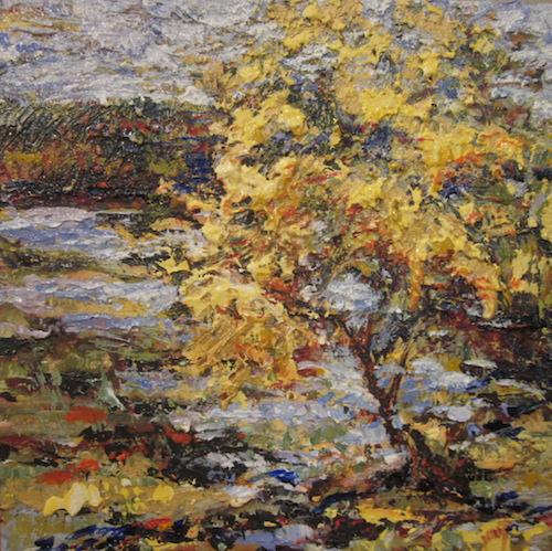 """Sunlit Tree  Oil on canvas  Framed, 15"""" x 15"""""""