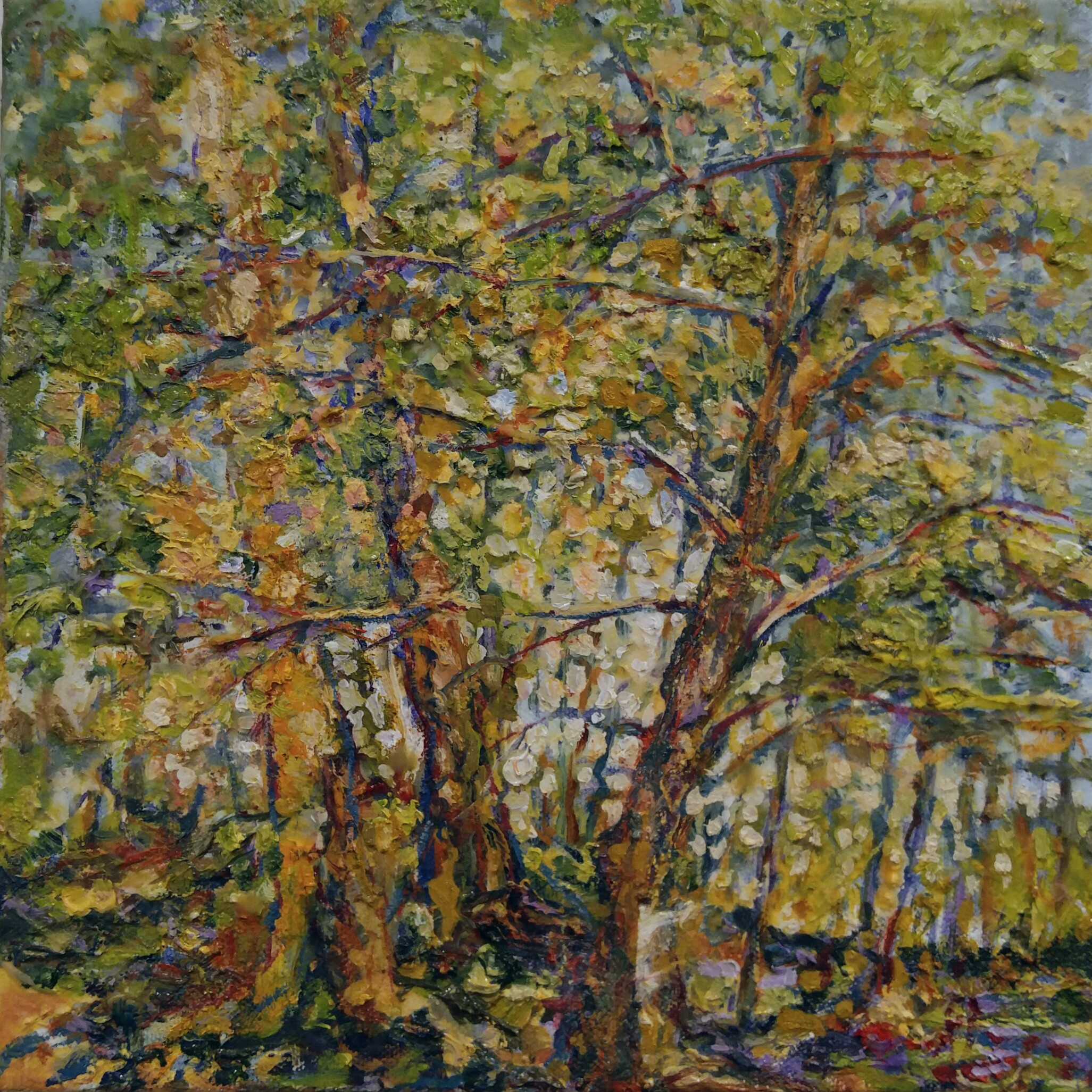 """Spring Trees  Oil on Canvas  10"""" x 10"""""""
