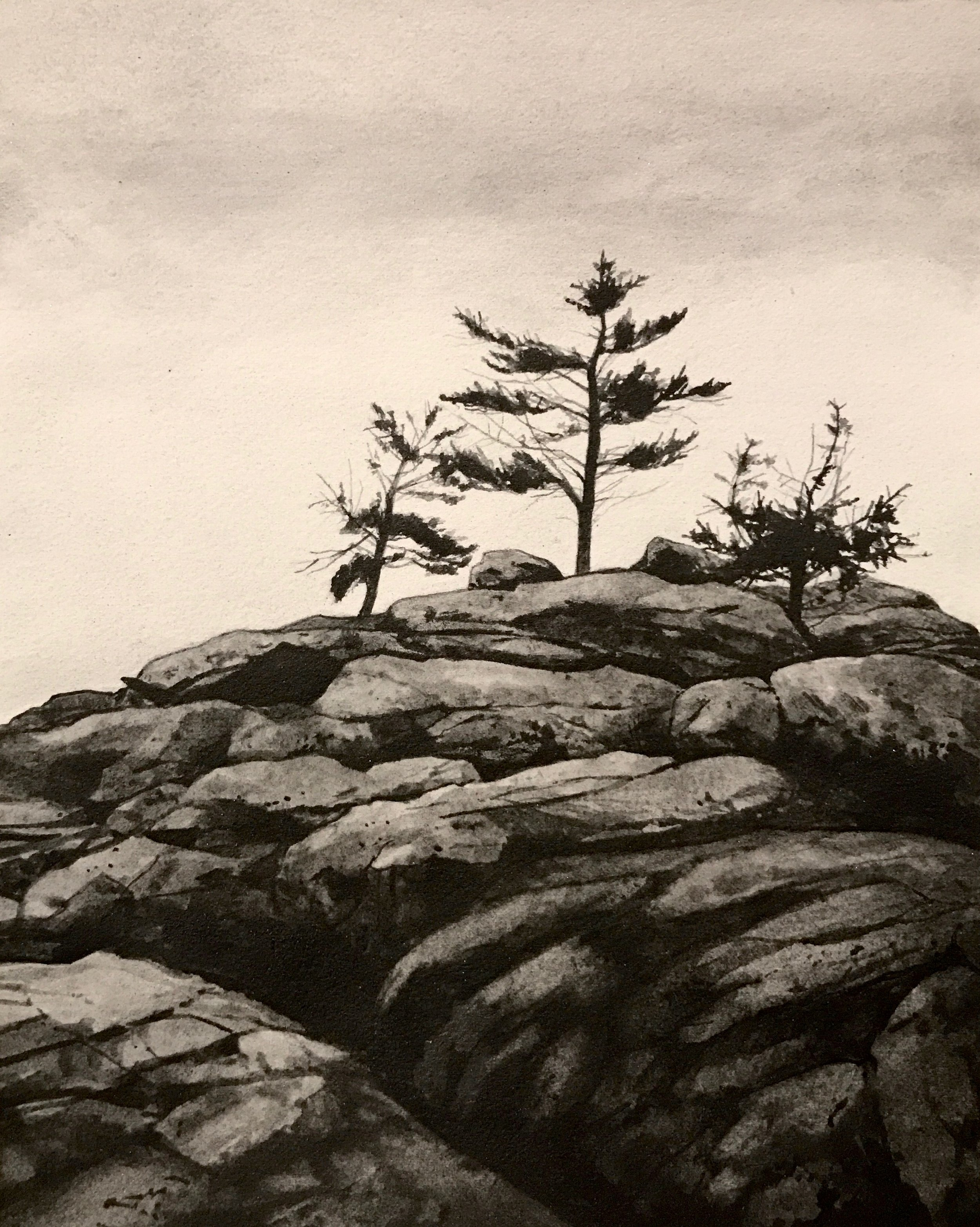 "Maine Coast ll  Liquid graphite on paper  19"" x 17"" framed"