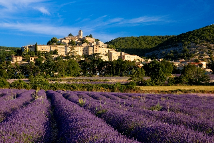 France Provence Early Morning Below Banon.JPG