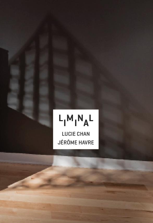 liminal cover1.jpg