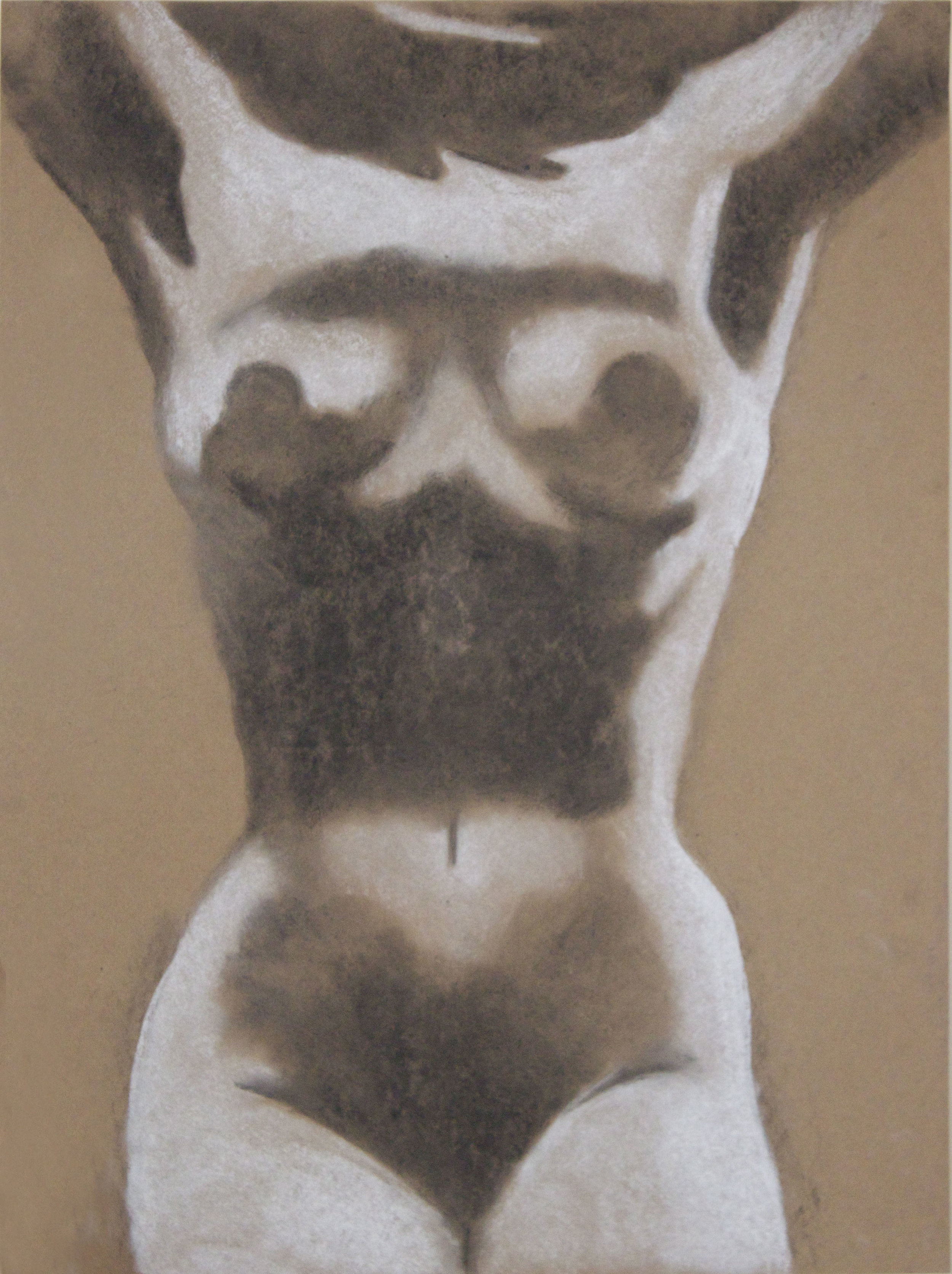 """18"""" x 24"""" Charcoal and White Conte Crayon on Kraft Paper"""