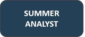 Summer+Analyst.jpg