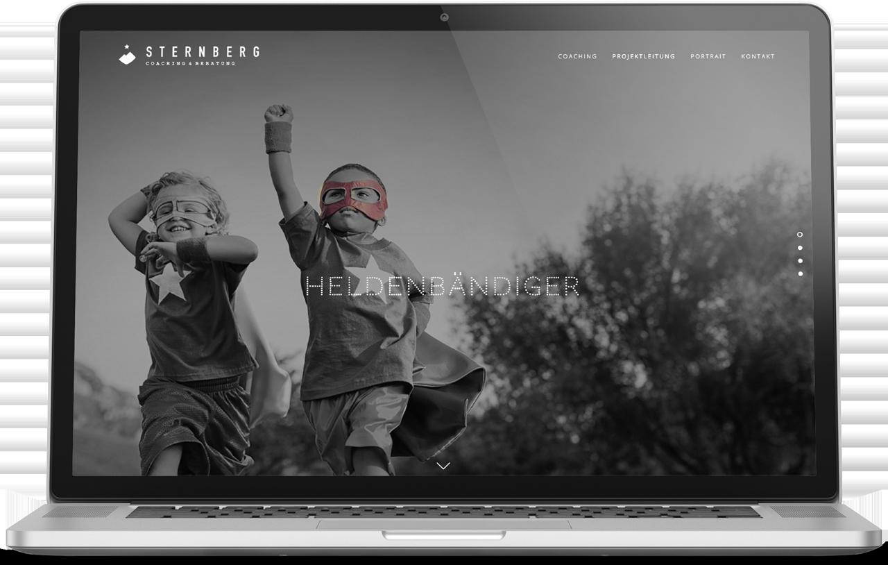 Sternberg Coaching  Corporate Design & Website  → Showcase