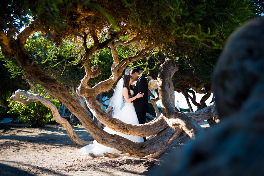 Khorsandyon_Fowler_ABM_Wedding_Photography_Khorsandyon0594_low.JPG