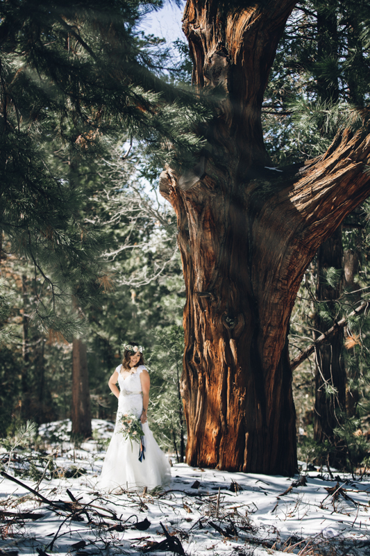 Bride and Groom at Big Bear by Derick Le Photography as seen on SanDiegoWedding.com (9 of 42).jpg