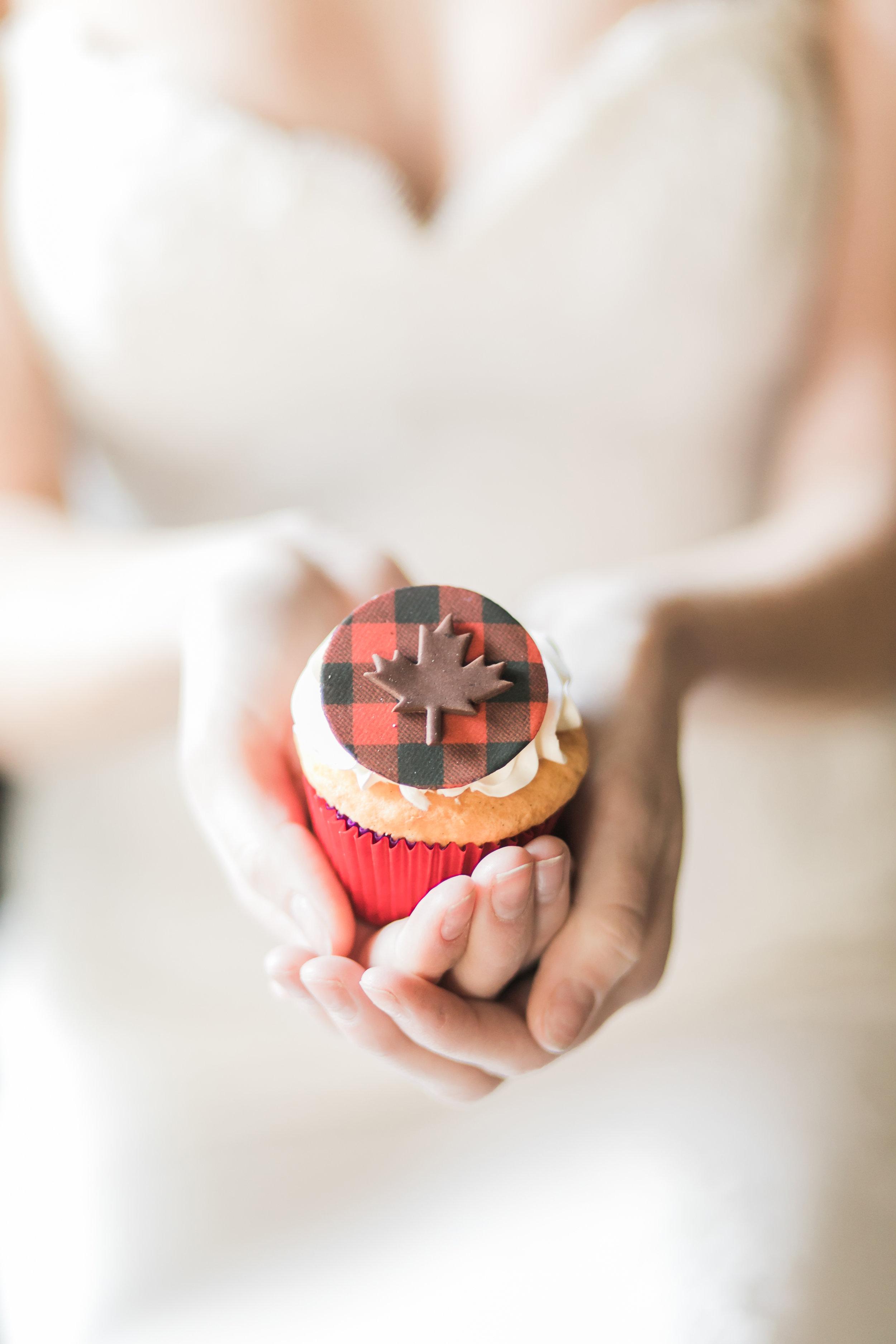 Canadian_black_red_silver_wedding_editorial_shoot-334.jpg
