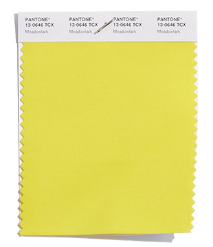 Pantone-Fashion-Color-Trend-Report-London-Spring-2018-Swatch-Meadowlark.jpg