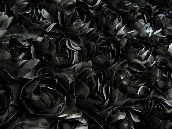 black roses backdrop Shadowcatcher.jpg