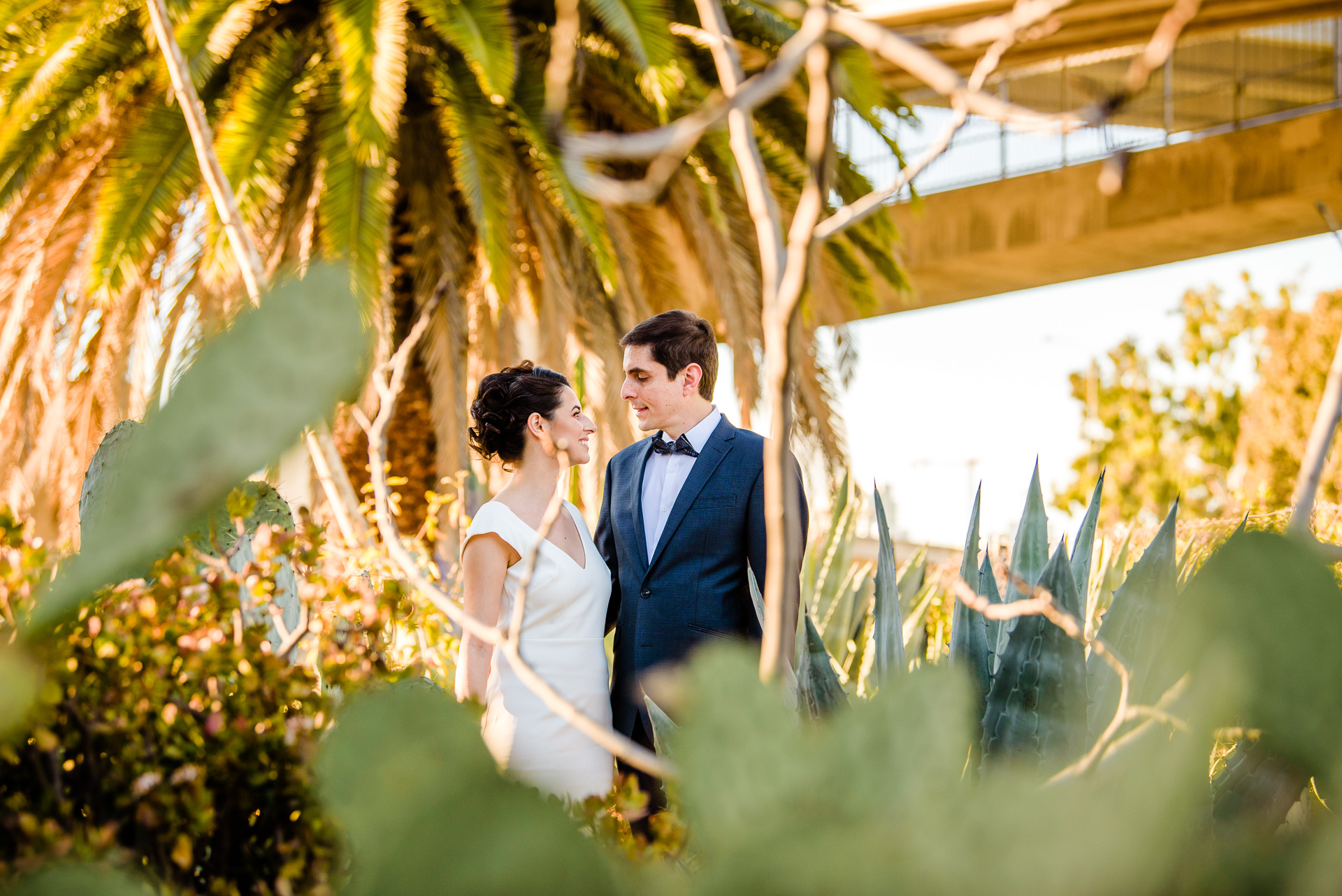 12.29.17 - Michelle and Tommaso Wedding - San Diego Courthouse -  Paul Douda Photography - 062.jpg