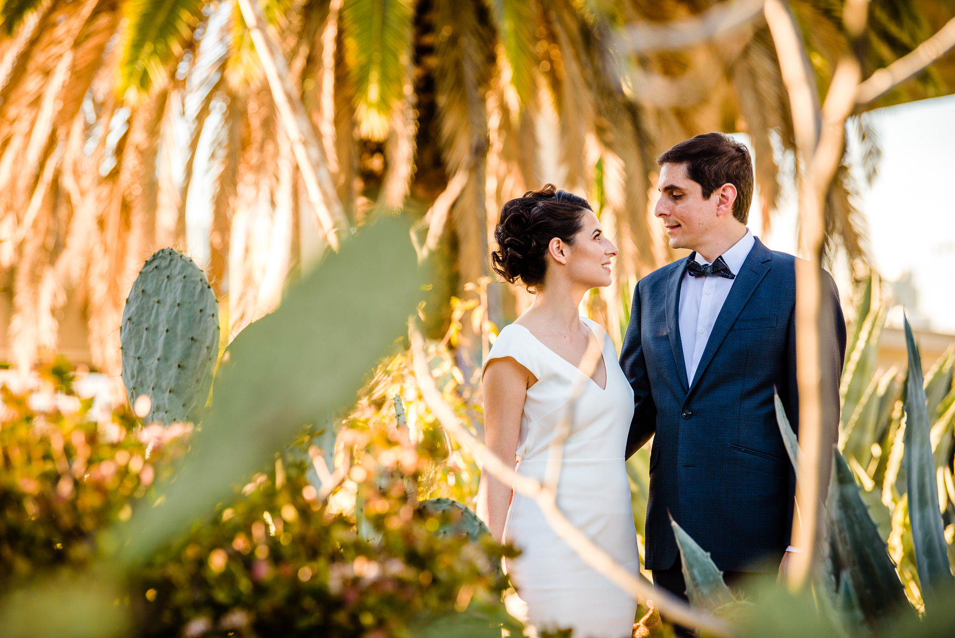 12.29.17 - Michelle and Tommaso Wedding - San Diego Courthouse -  Paul Douda Photography - 064.jpg