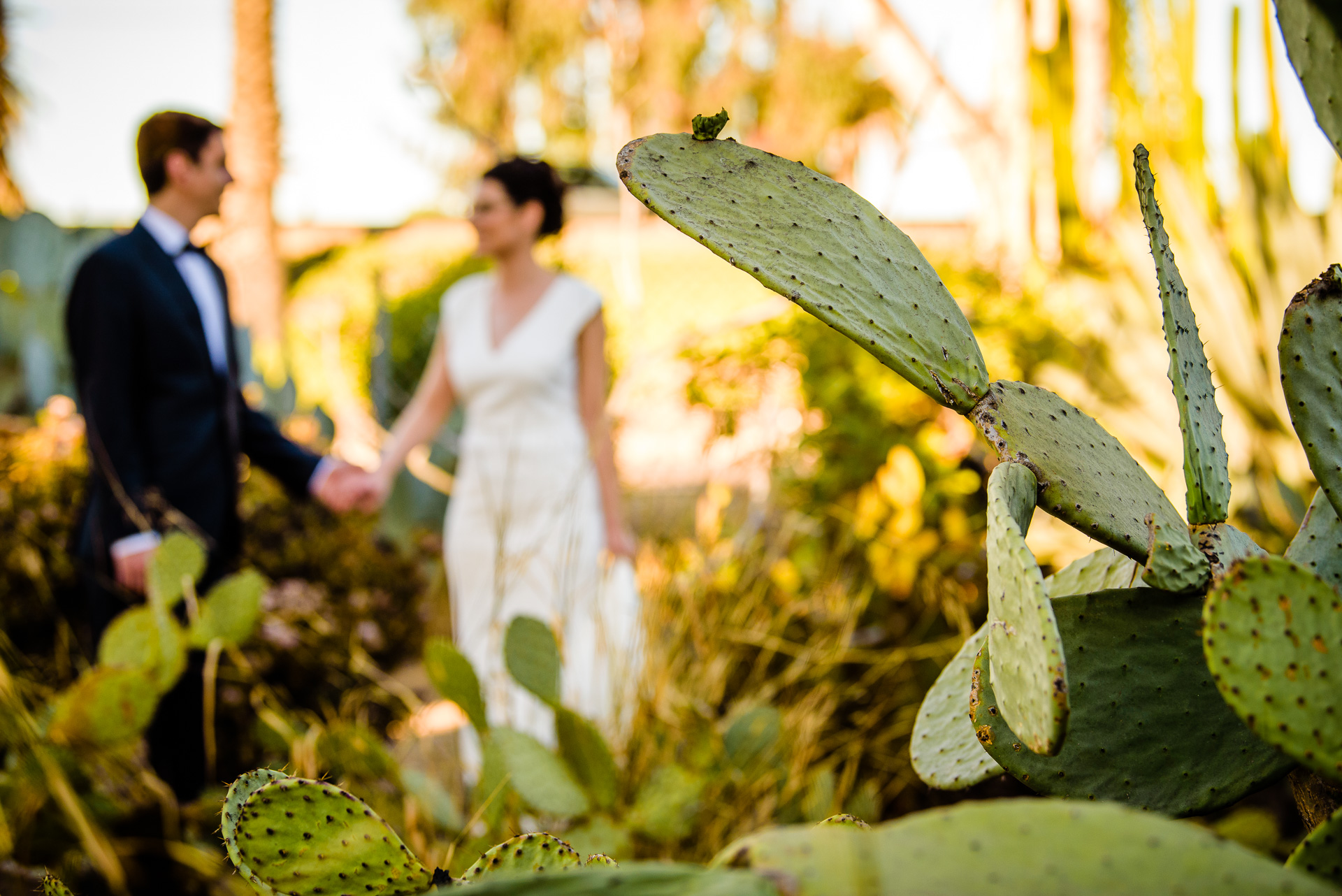 12.29.17 - Michelle and Tommaso Wedding - San Diego Courthouse -  Paul Douda Photography - 065.jpg
