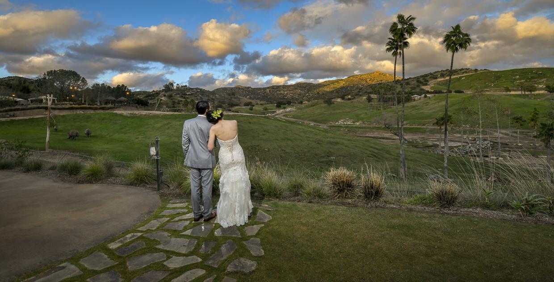Safari-Park-Wedding-Stephanie-and-Sam-Brant-Bender-Photography-055.jpg