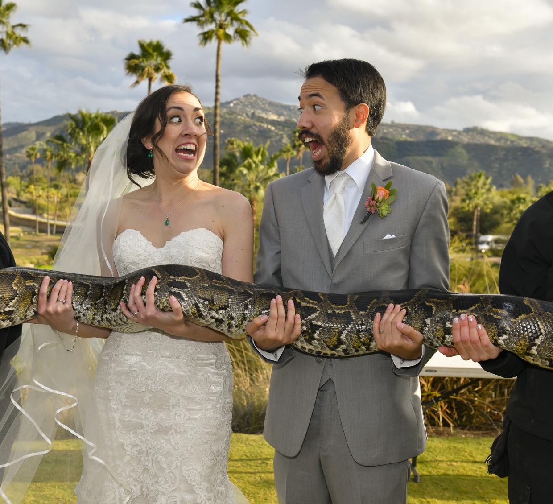 Safari-Park-Wedding-Stephanie-and-Sam-Brant-Bender-Photography-048.jpg