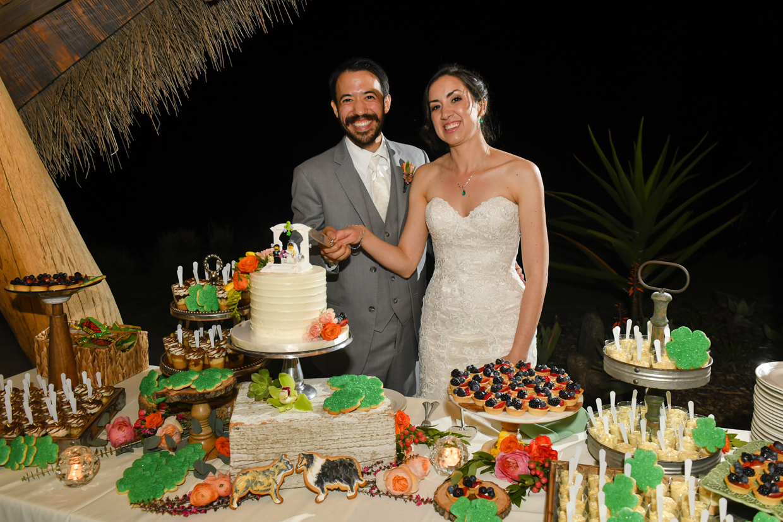 Safari-Park-Wedding-Stephanie-and-Sam-Brant-Bender-Photography-069.jpg