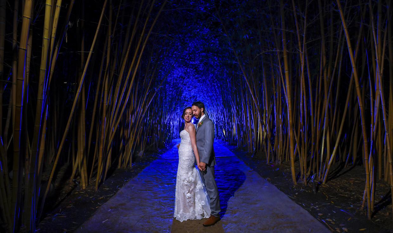 Safari-Park-Wedding-Stephanie-and-Sam-Brant-Bender-Photography-072.jpg