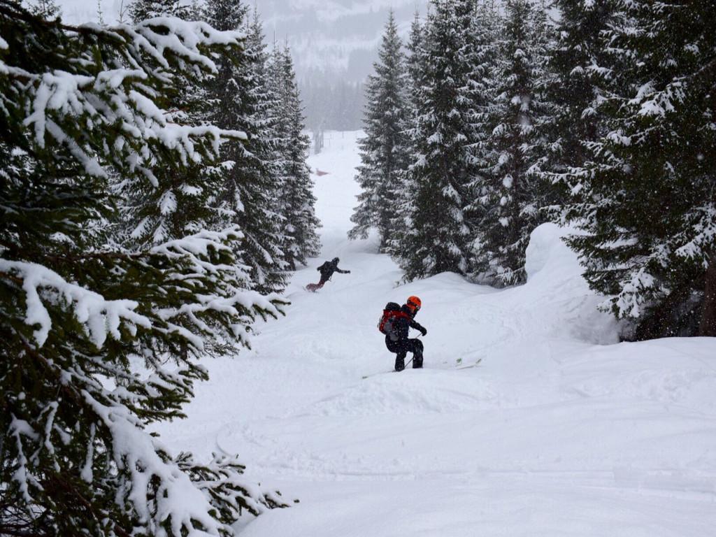 Det er foreløpig dårlig sikt rundt Hodlekve så vi utforsker skogskjøring i skisenteret. Foto: Knut Halvor Møgster.