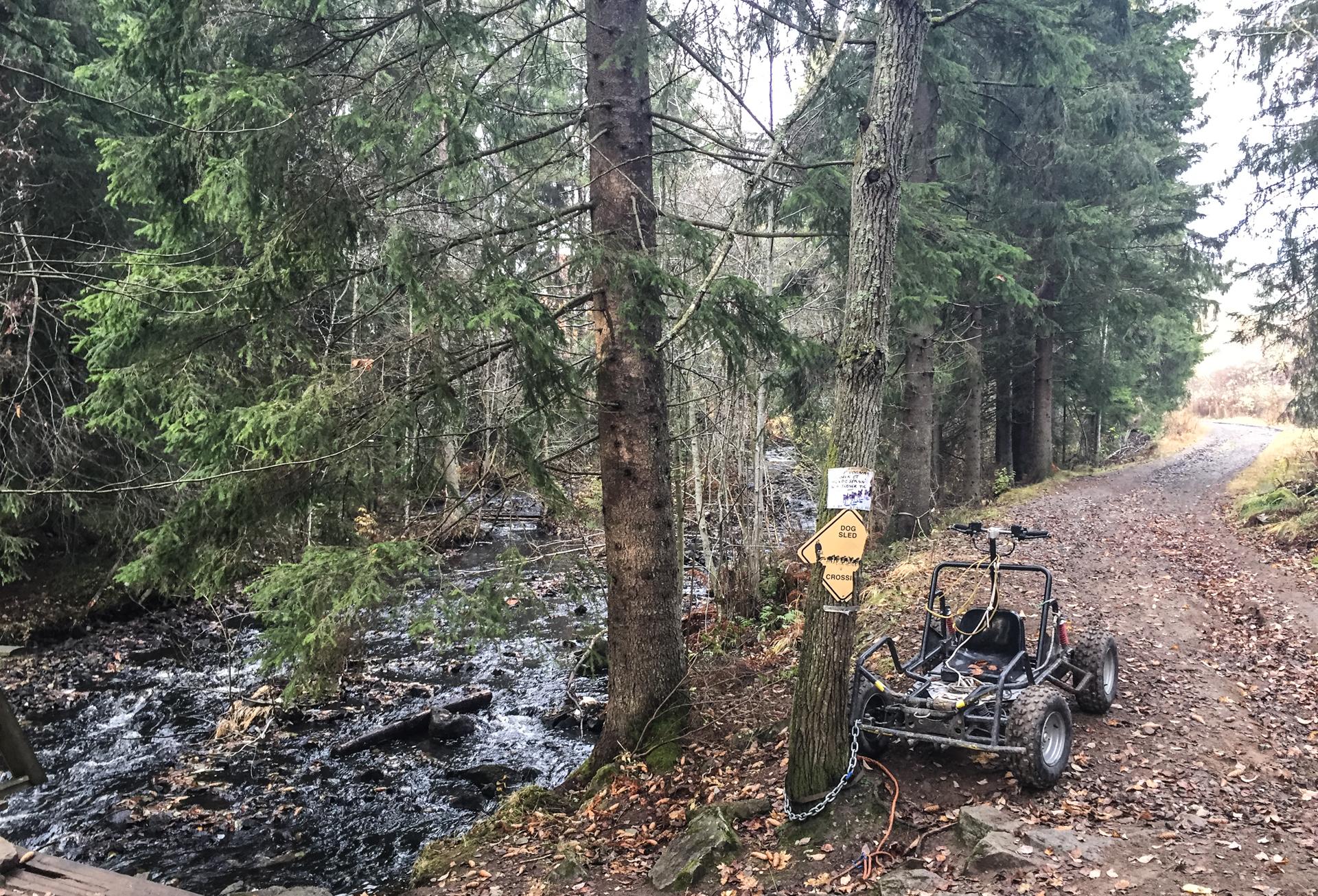 """""""Denne vogna brukes til trening til Finnmarksløpet. La den være i fred"""", står det på treet. Her er det noen som tydeligvis har det moro i skogen."""